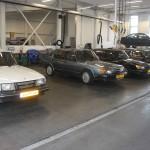20110925Flachschnautzer-Rit2 (24)